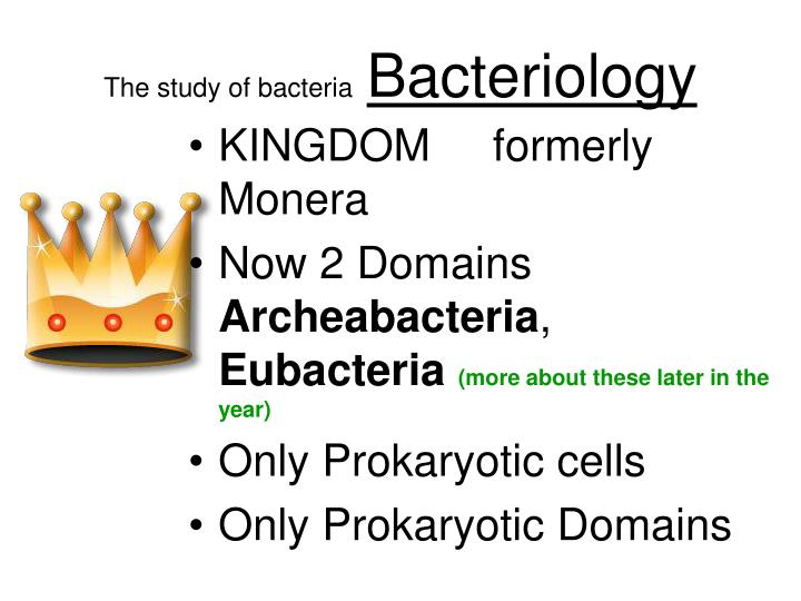 The study of bacteria