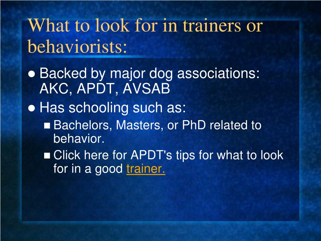 What to look for in trainers or behaviorists: