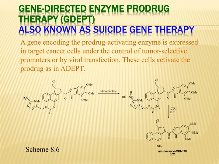 Gene-Directed Enzyme Prodrug Therapy (GDEPT)