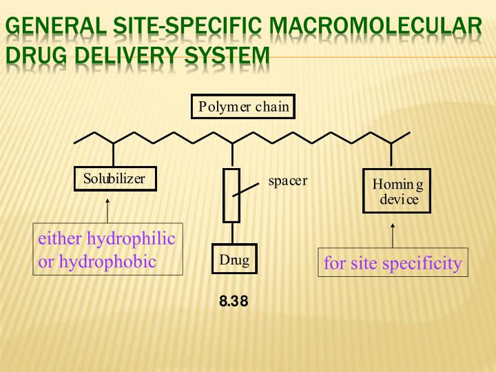 General Site-Specific Macromolecular Drug Delivery System
