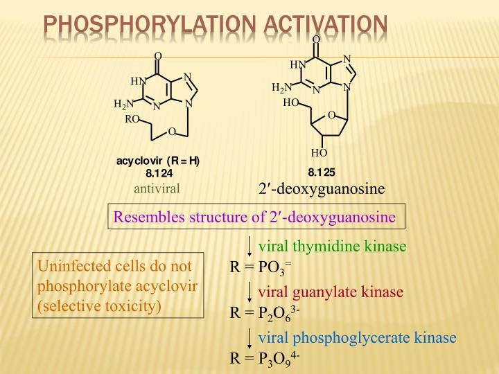 Phosphorylation Activation