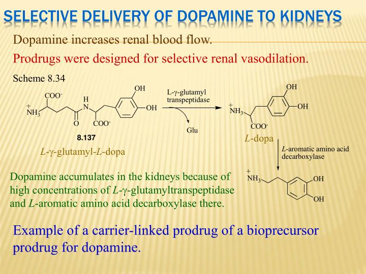 Selective Delivery of Dopamine to Kidneys