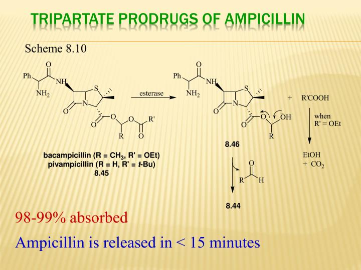 Tripartate Prodrugs of Ampicillin