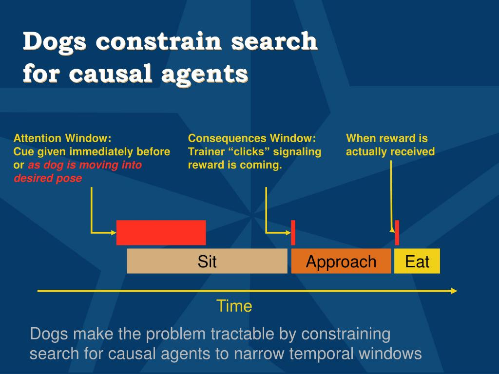 Dogs constrain search for causal agents