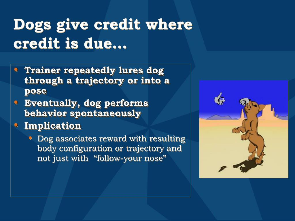 Dogs give credit where credit is due…