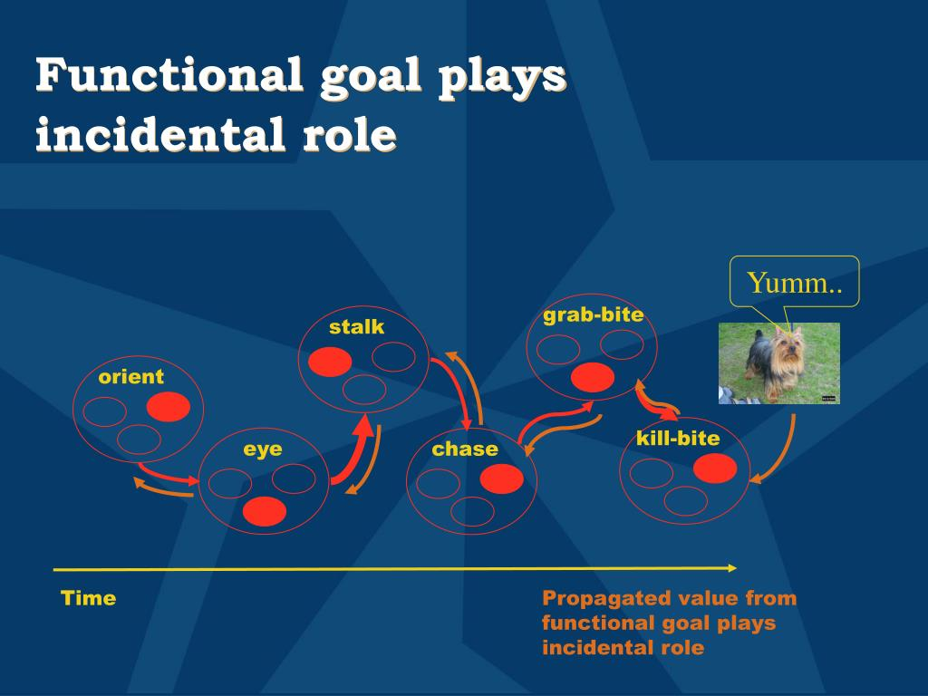 Functional goal plays incidental role