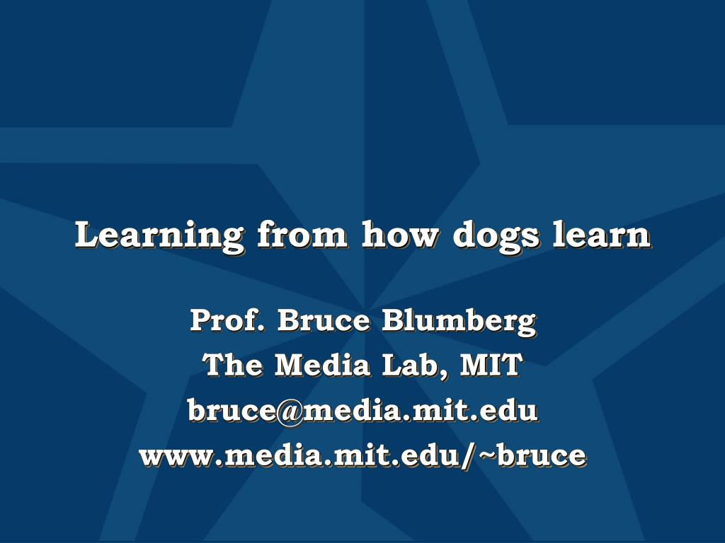 Learning from how dogs learn