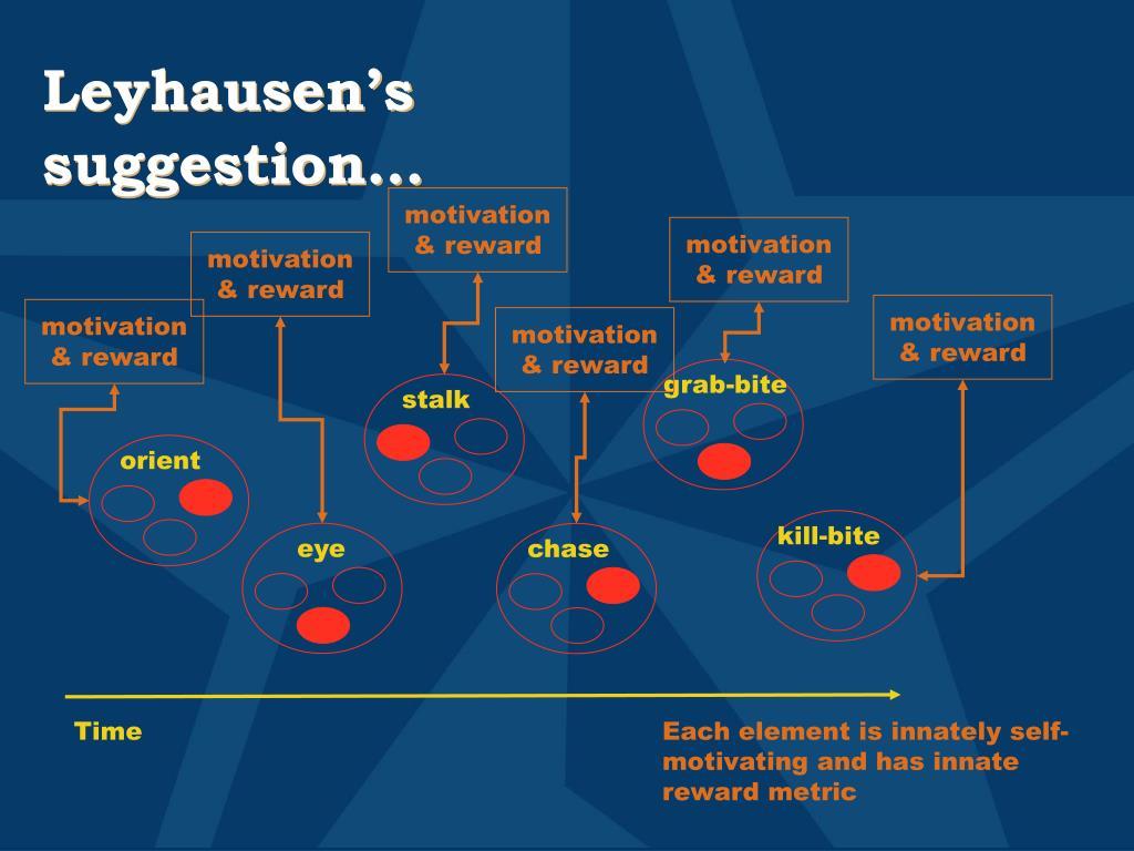 Leyhausen's suggestion…