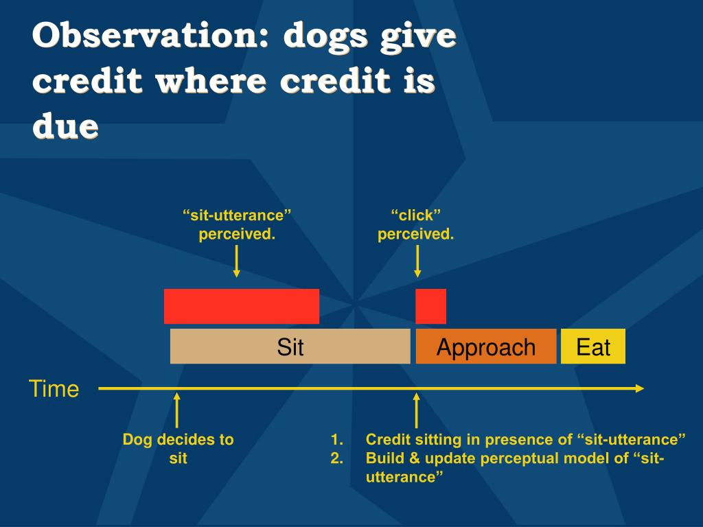 Observation: dogs give credit where credit is due