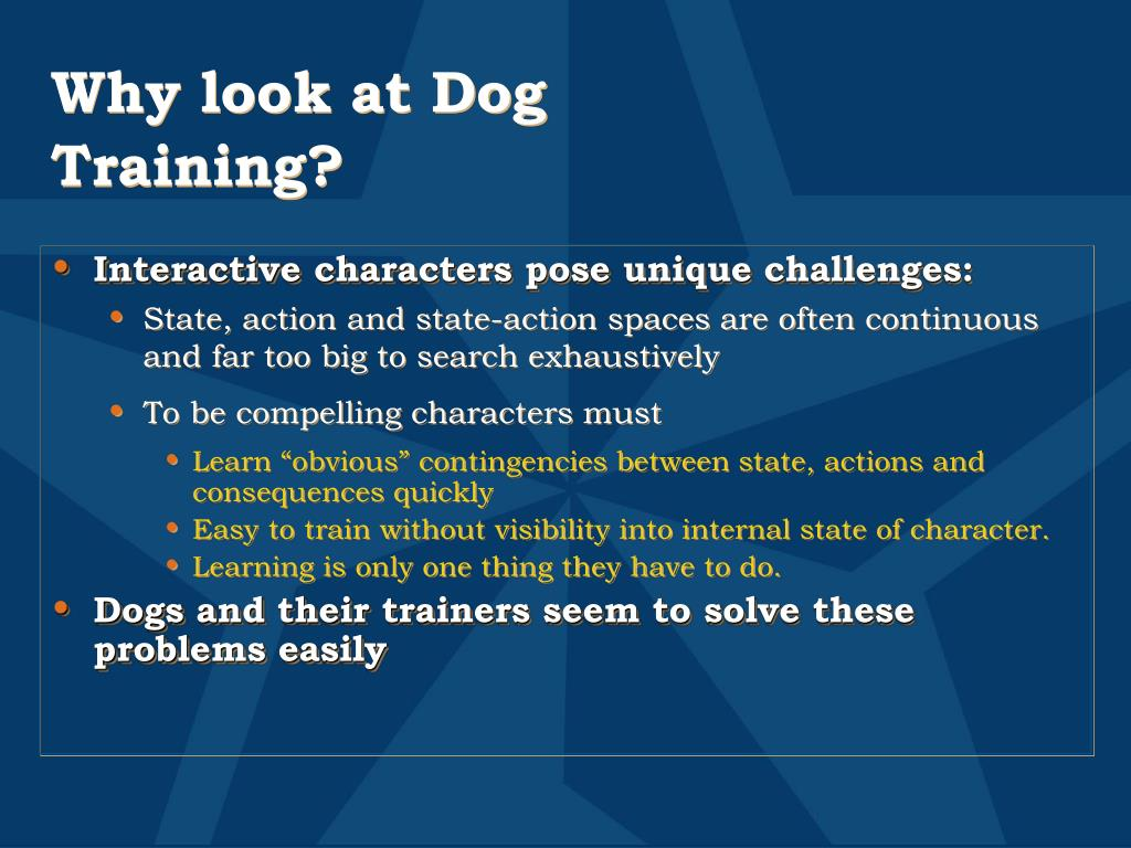 Why look at Dog Training?