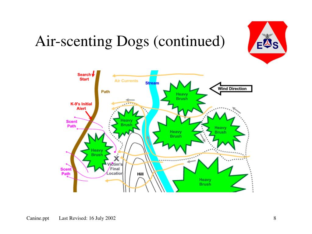 Air-scenting Dogs (continued)