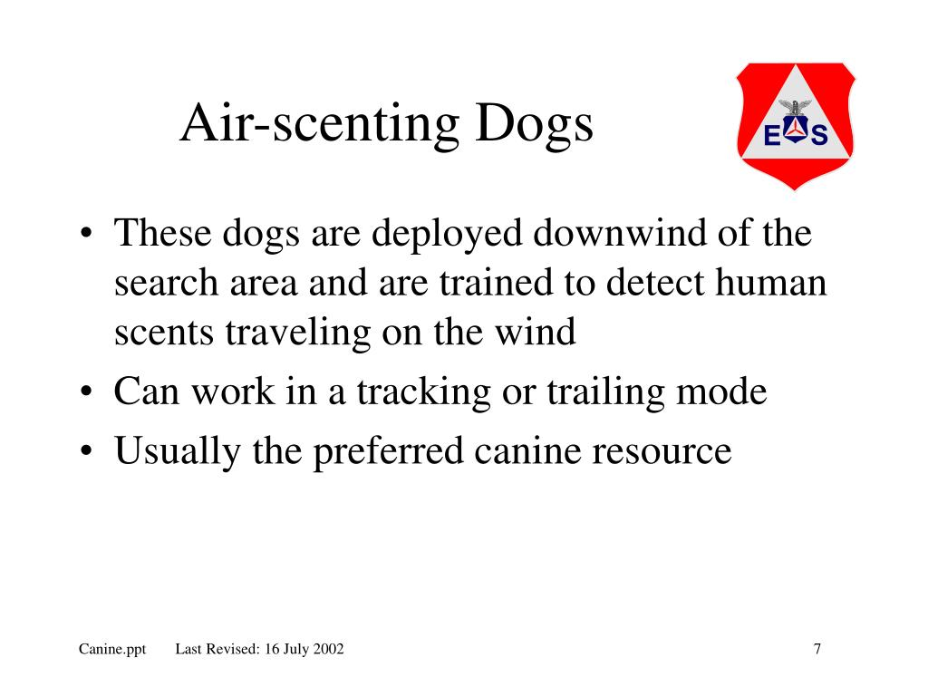 Air-scenting Dogs