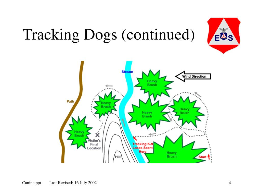 Tracking Dogs (continued)
