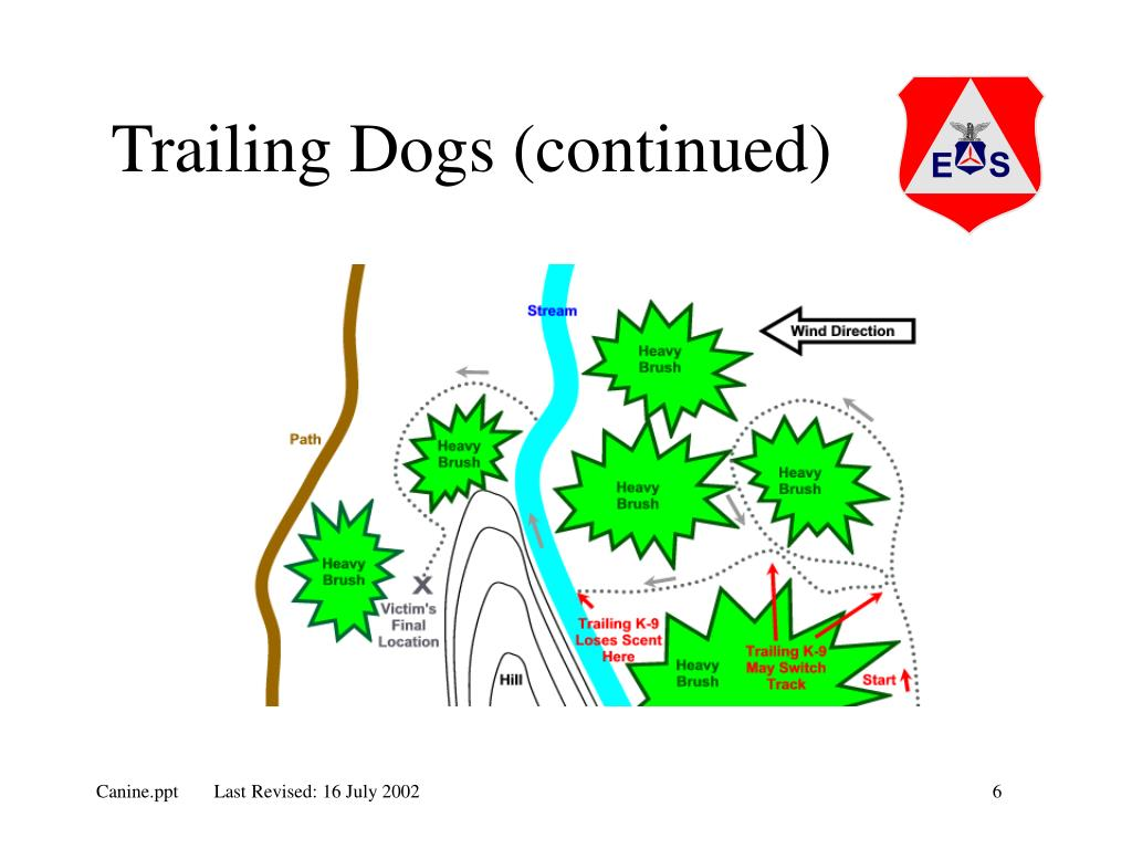 Trailing Dogs (continued)