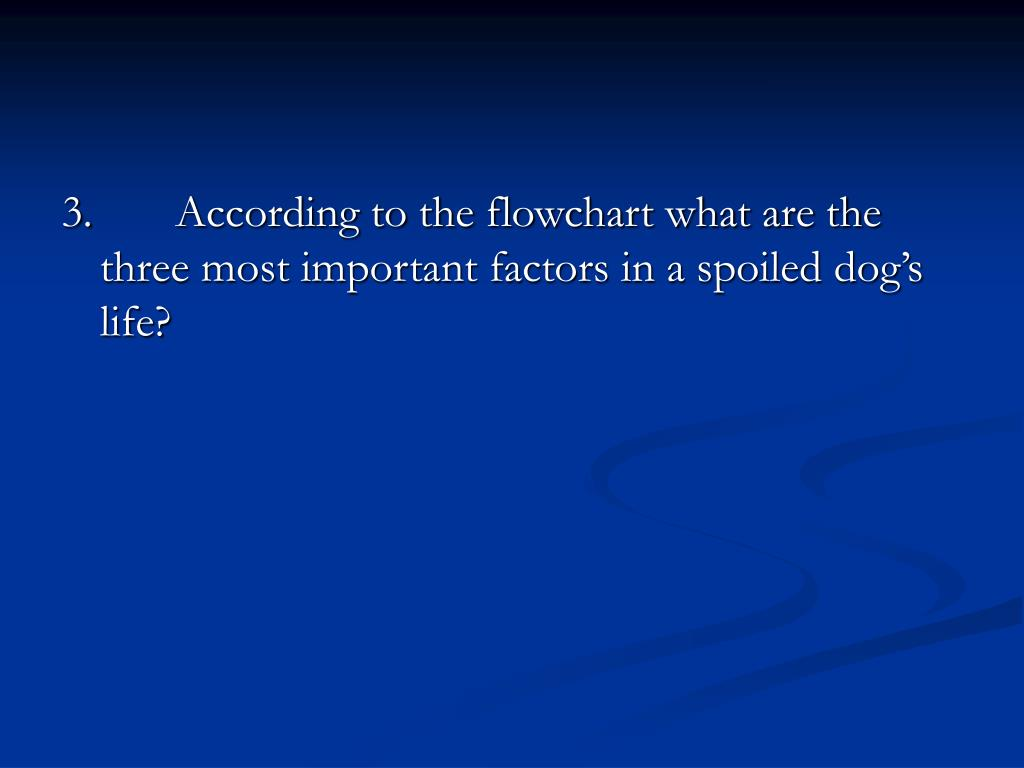 3. According to the flowchart what are the three most important factors in a spoiled dog's life?