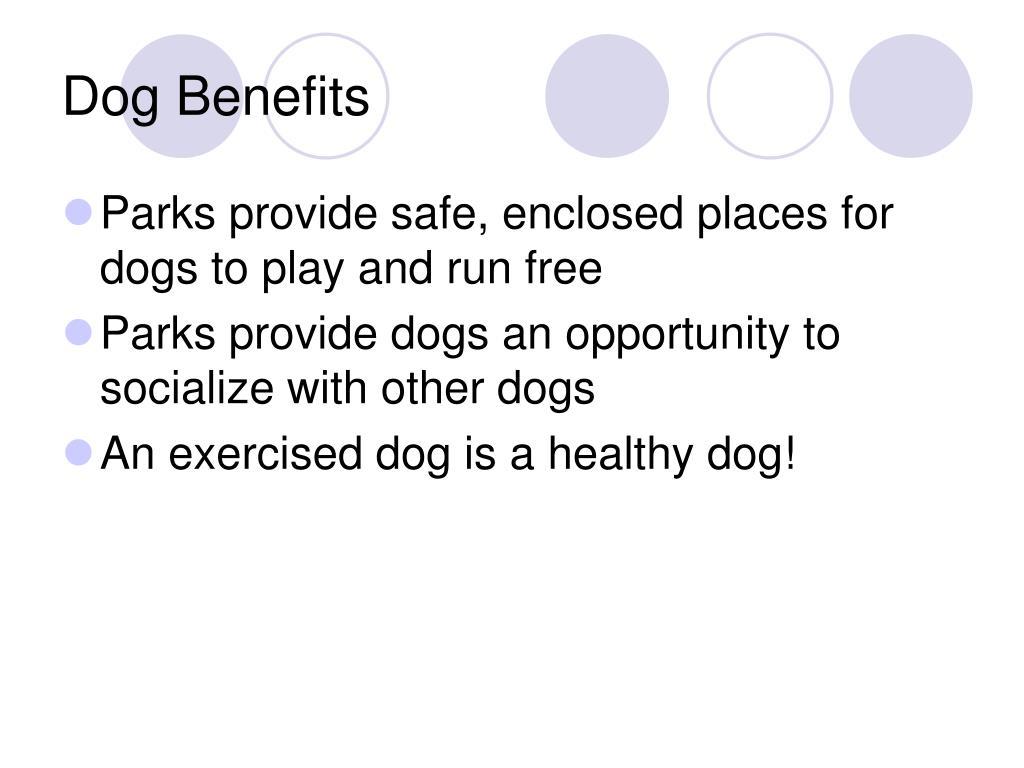 Dog Benefits