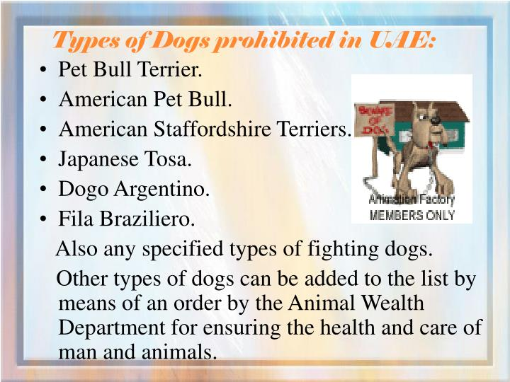 Types of dogs prohibited in uae3
