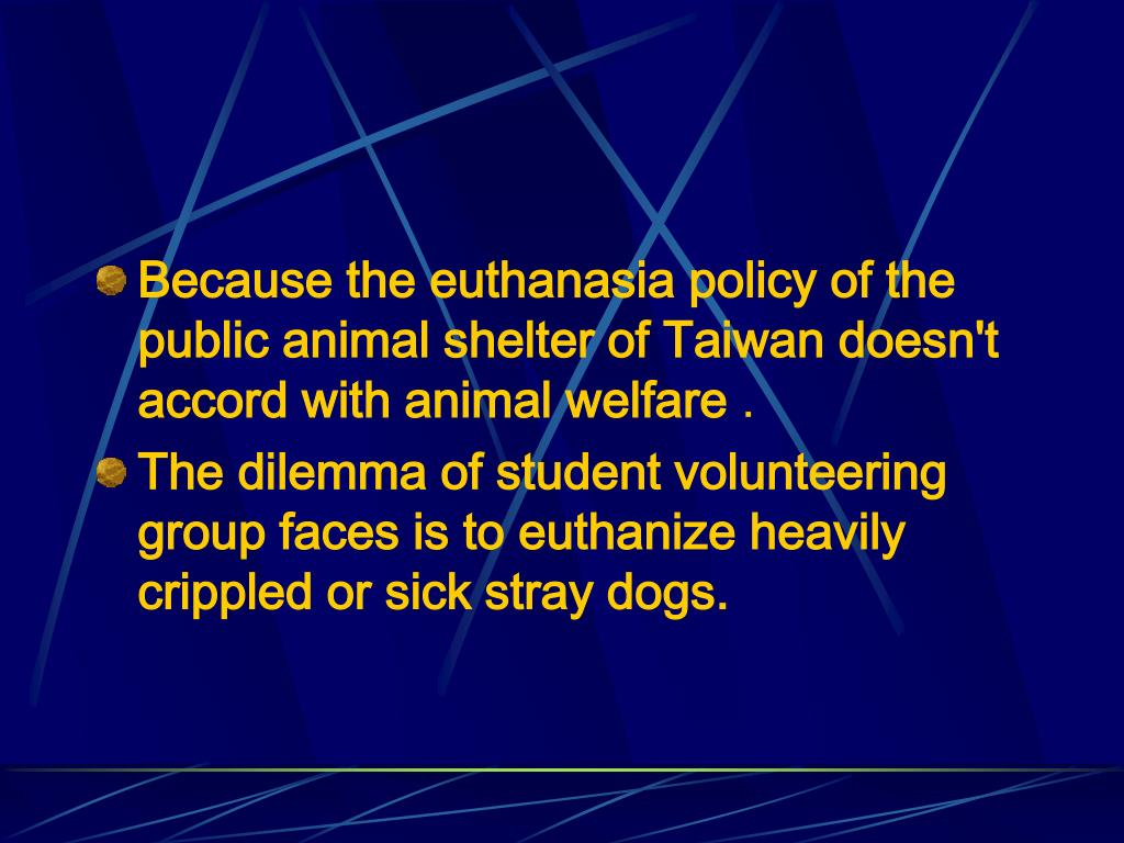 Because the euthanasia policy of the public animal shelter of Taiwan doesn't accord with animal welfare