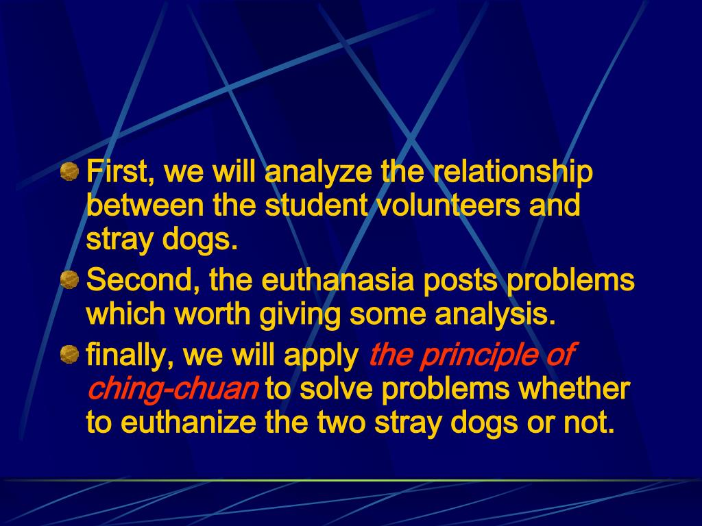First, we will analyze the relationship between the student volunteers and stray dogs.