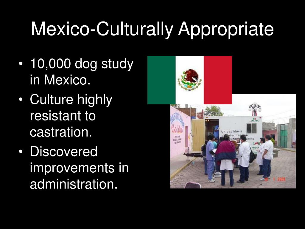 Mexico-Culturally Appropriate