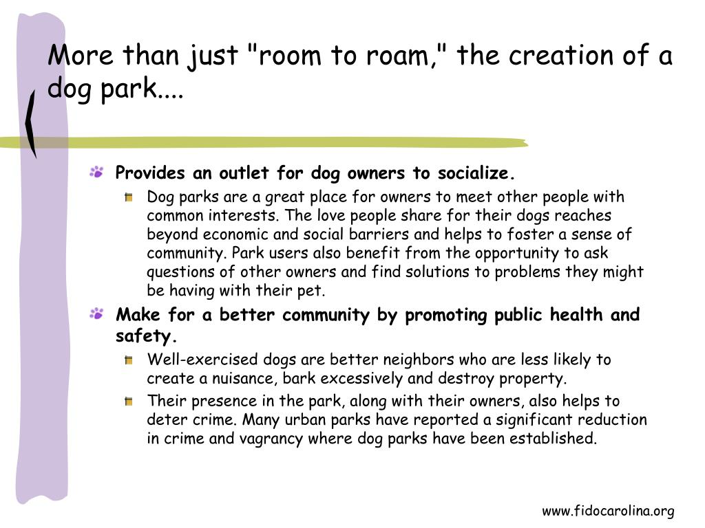 "More than just ""room to roam,"" the creation of a dog park...."