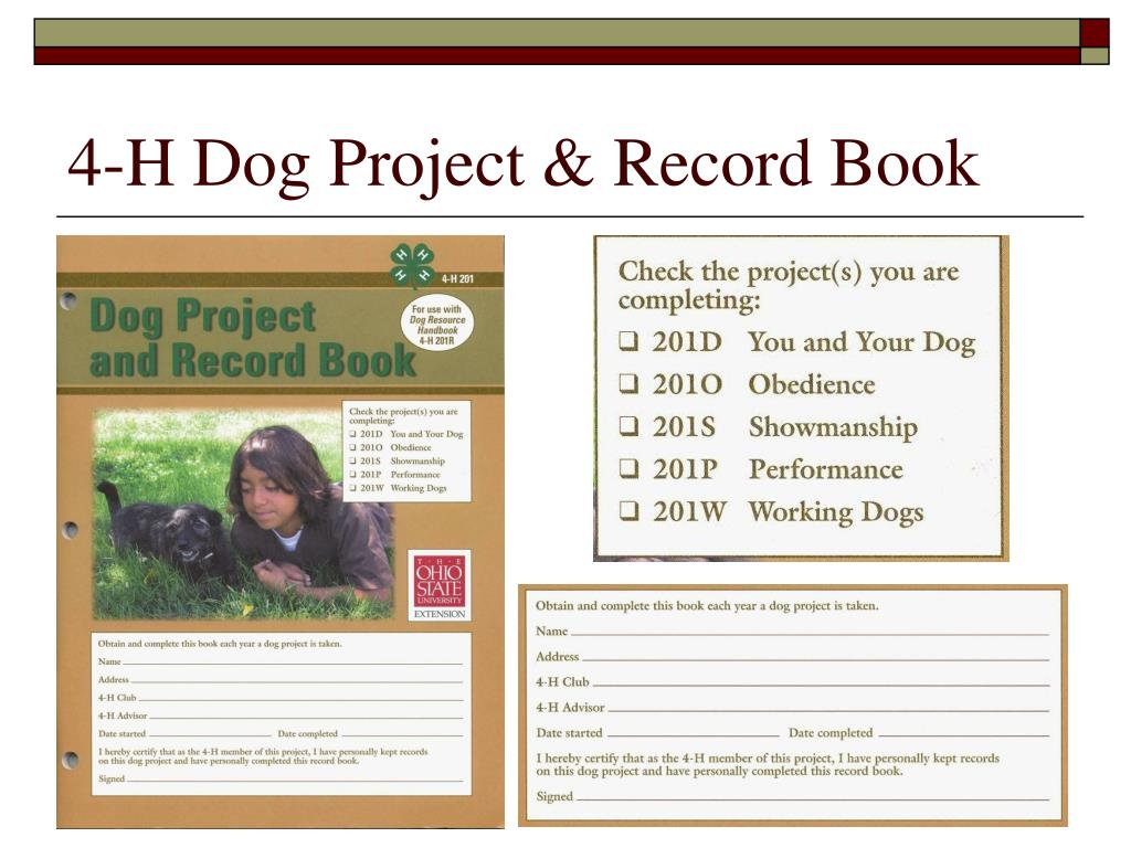 4-H Dog Project & Record Book
