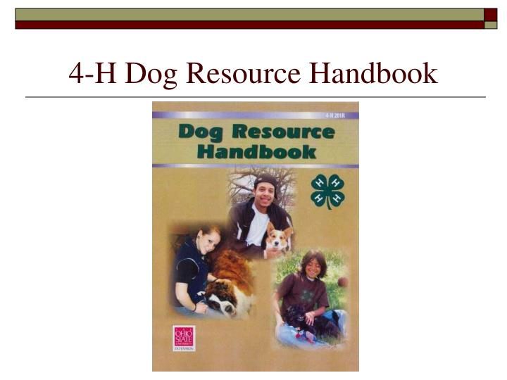 4 h dog resource handbook