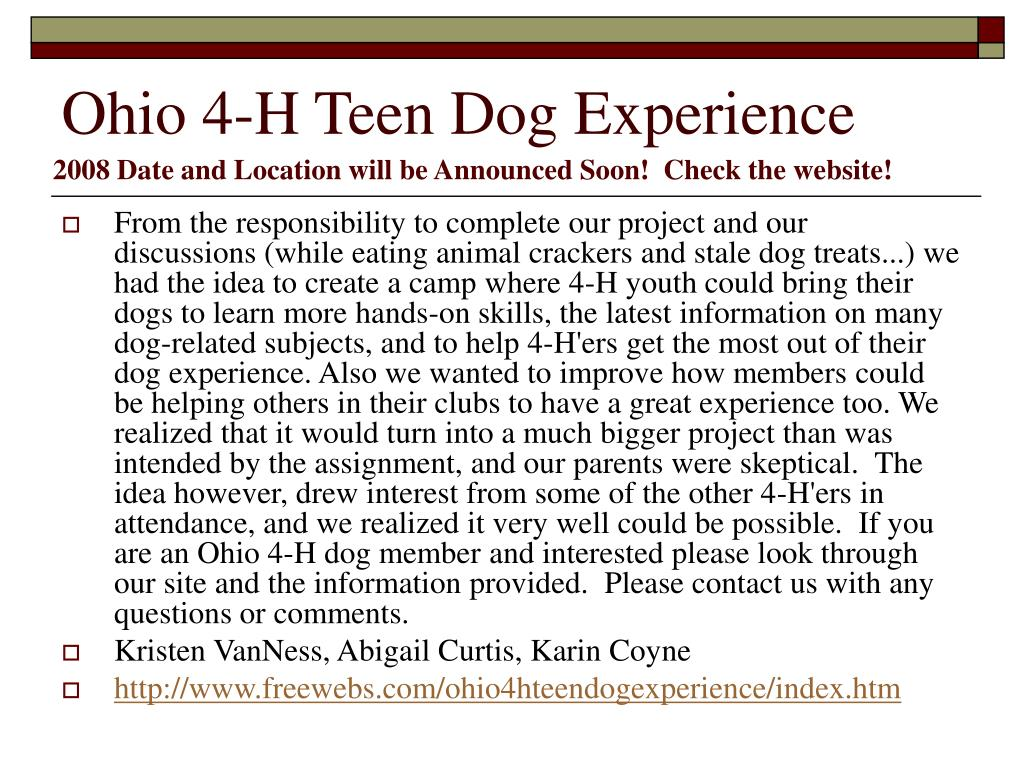 Ohio 4-H Teen Dog Experience