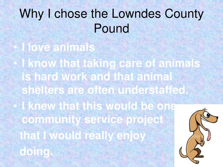 Why i chose the lowndes county pound