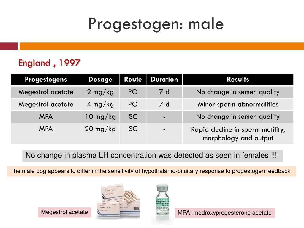 Progestogen: male