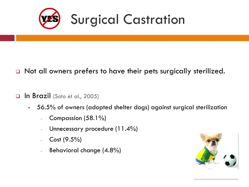 Surgical Castration
