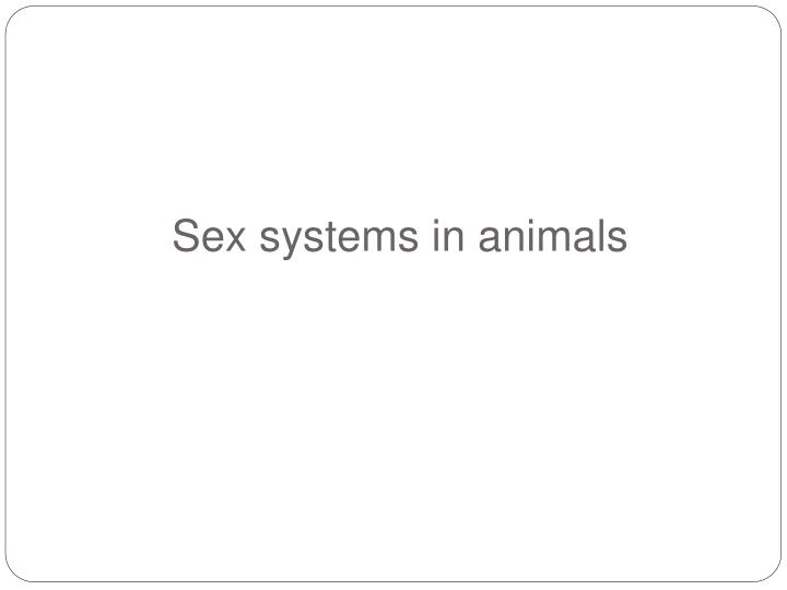 Sex systems in animals