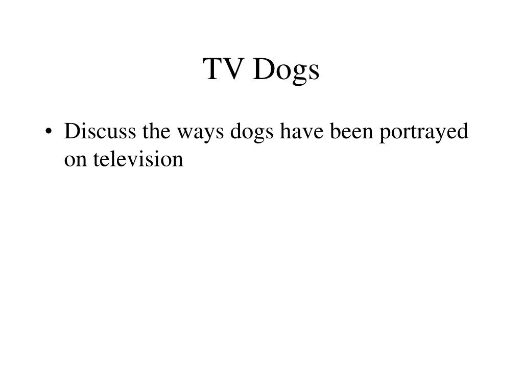 TV Dogs