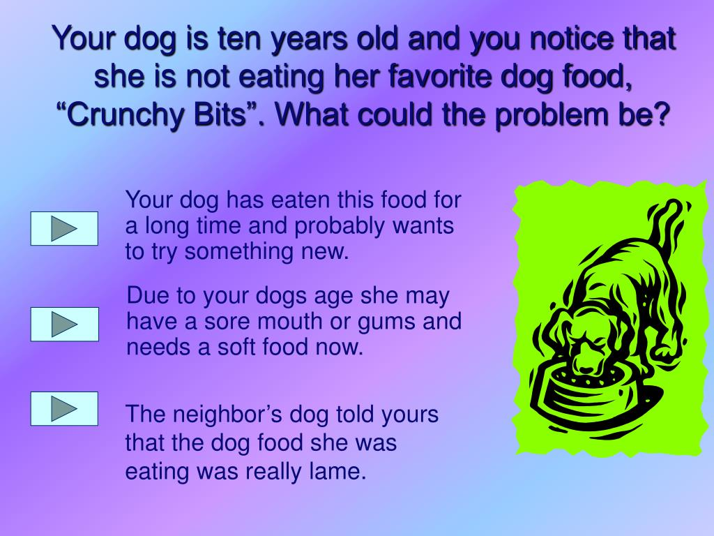 Your dog has eaten this food for a long time and probably wants to try something new.