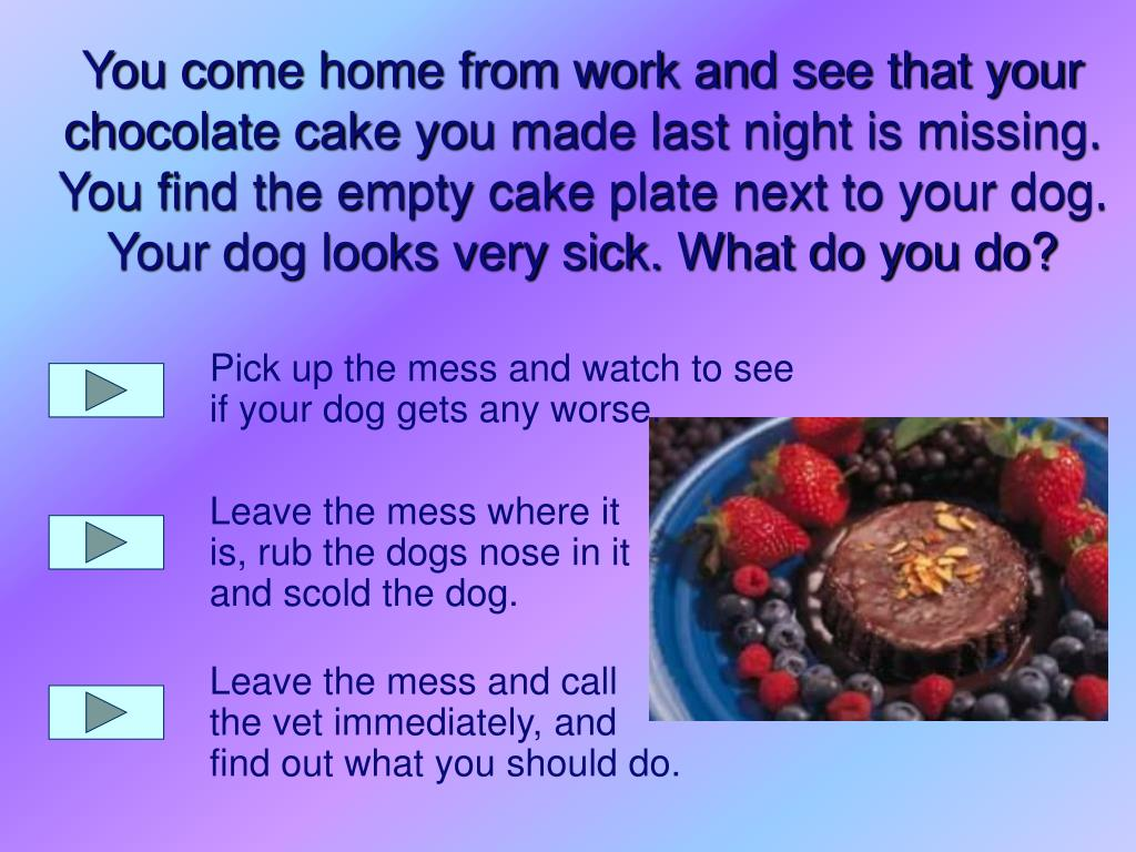 Pick up the mess and watch to see if your dog gets any worse.