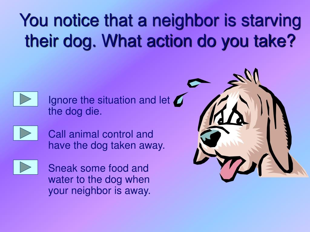Ignore the situation and let the dog die.