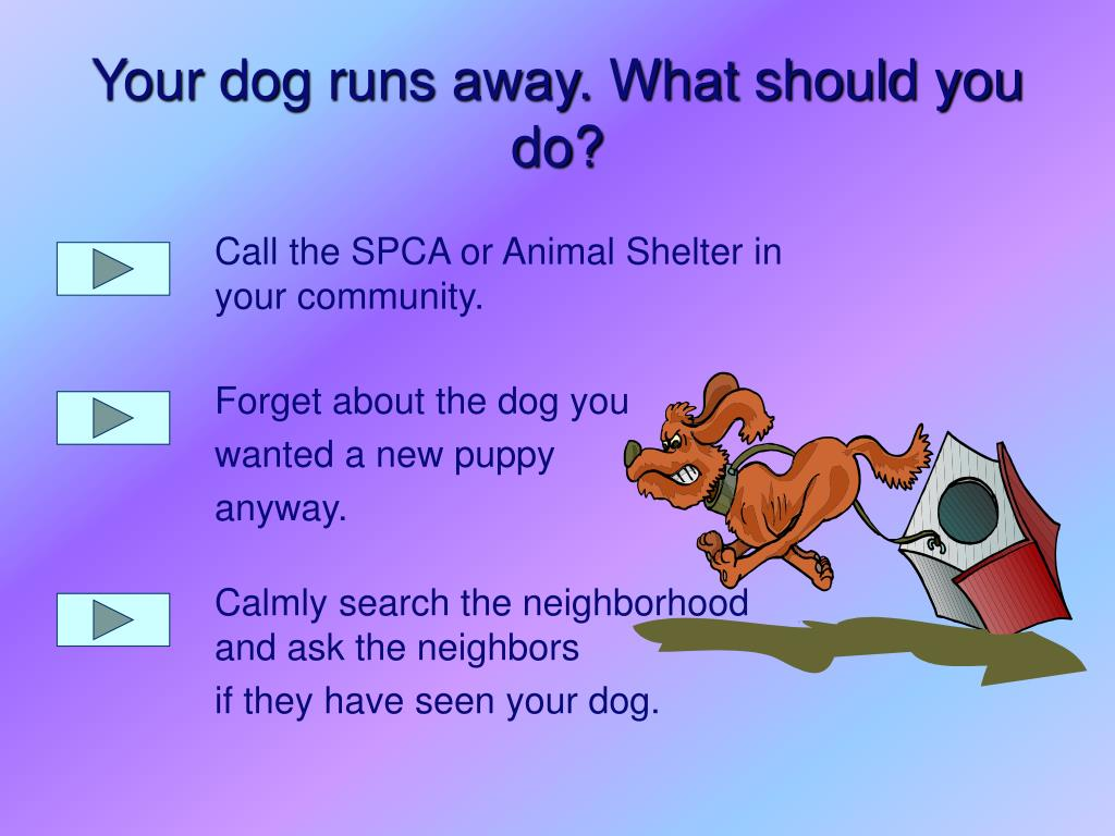 Call the SPCA or Animal Shelter in your community.