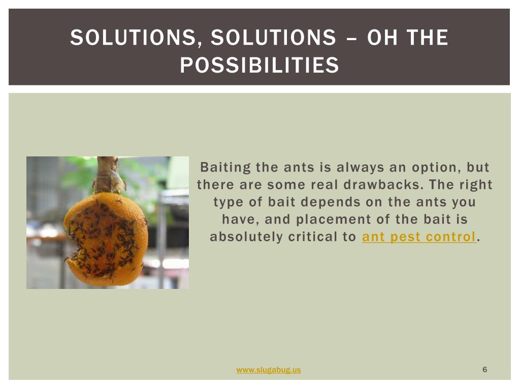 Solutions, solutions – oh the possibilities