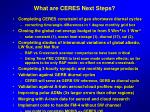 what are ceres next steps