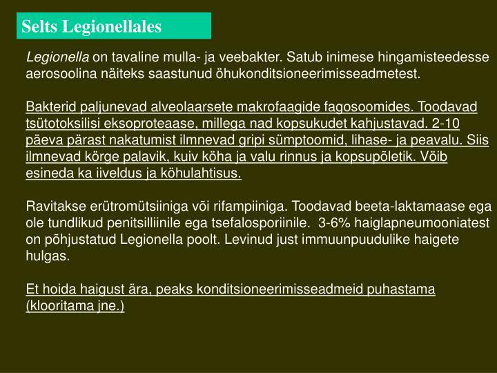 Selts Legionellales