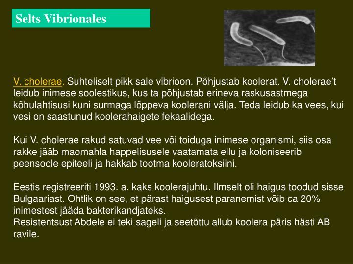 Selts Vibrionales