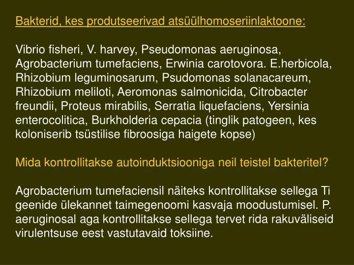 Bakterid, kes produtseerivad atsüülhomoseriinlaktoon