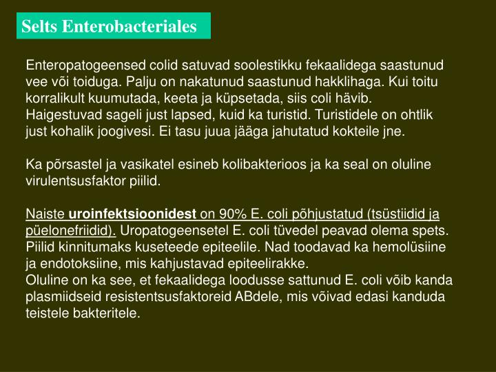 Selts Enterobacteriales