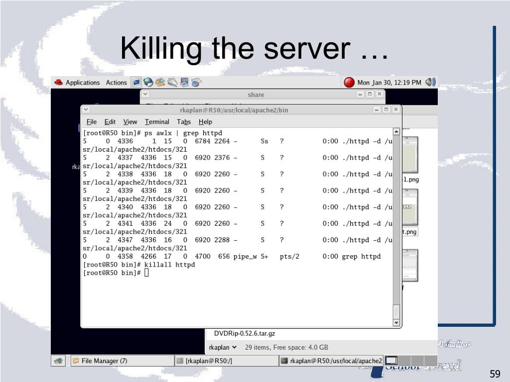 Killing the server …