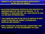 benefits of this new business opportunity in the gulf of mexico