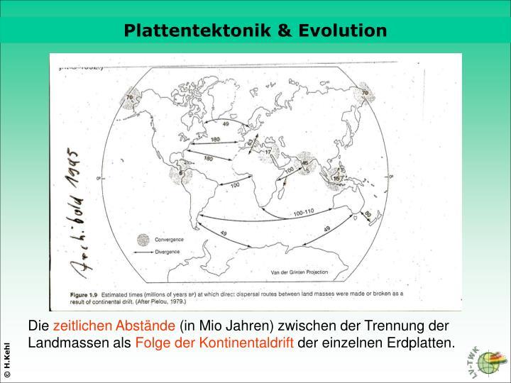 Plattentektonik & Evolution