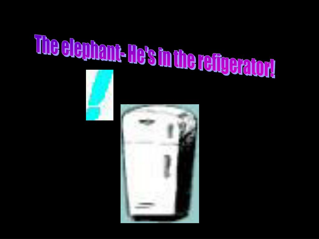 The elephant- He's in the refigerator!