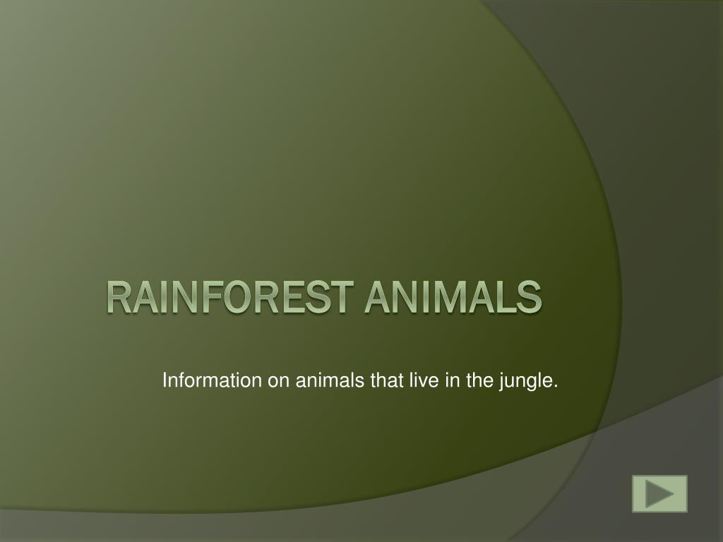 Information on animals that live in the jungle.
