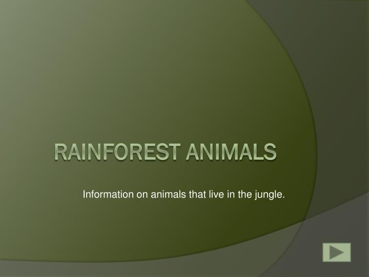 Information on animals that live in the jungle