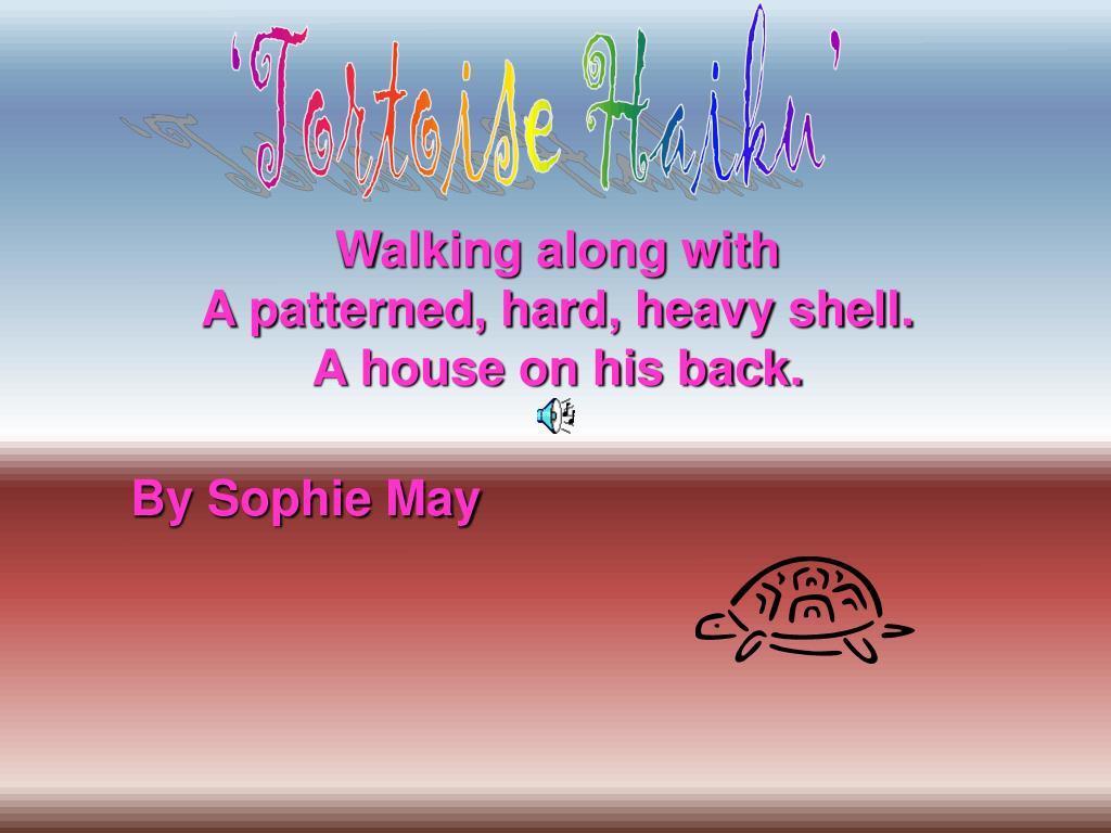'Tortoise Haiku'